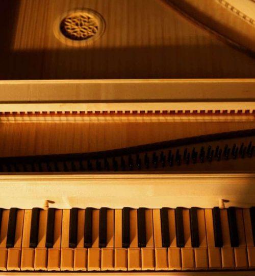 clavecin vu de haut, touches et cordes